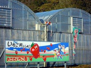 おざきイチゴ園.JPG